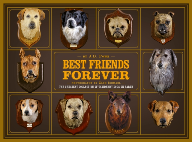 Best Friends Forever: The Greatest Collection of Taxidermy Dogs on Earth