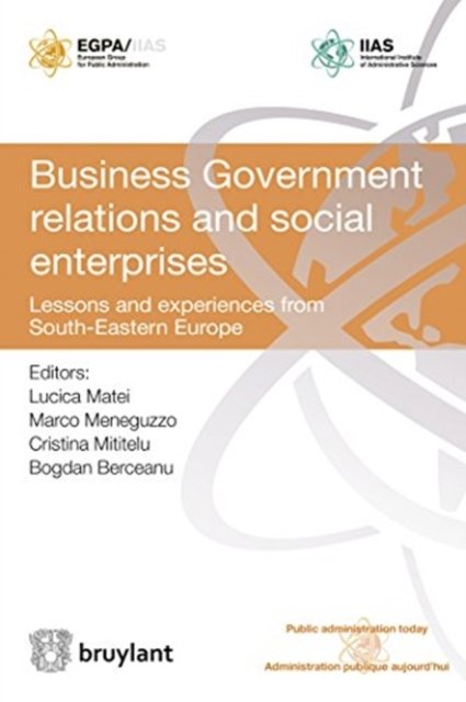 Business Government Relations and Social Enterprises
