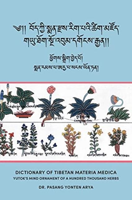 Dictionary of Tibetan Materia Medica (Bod kyi sman rdzas rig pa'i tshig mdzod)