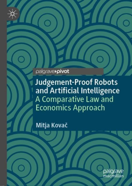 Judgement-Proof Robots and Artificial Intelligence