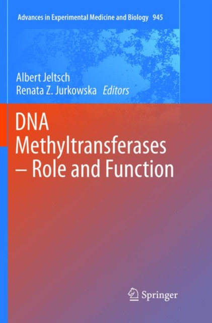 DNA Methyltransferases - Role and Function