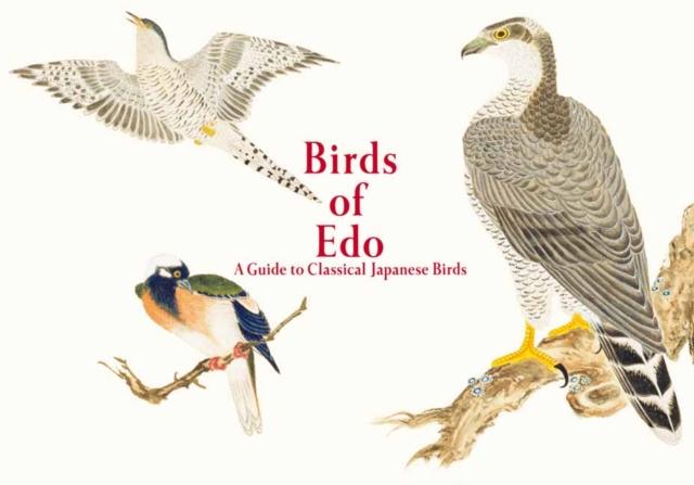 Birds of Edo
