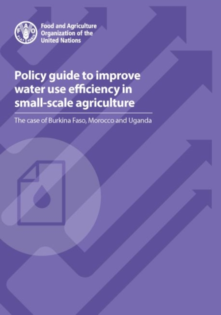 Policy Guide to Improve Water use Efficiency in Small-scale Agriculture