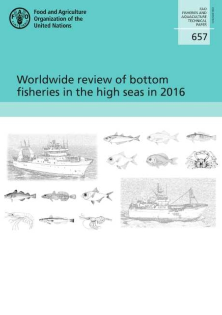Worldwide review of bottom fisheries in the high seas in 2016
