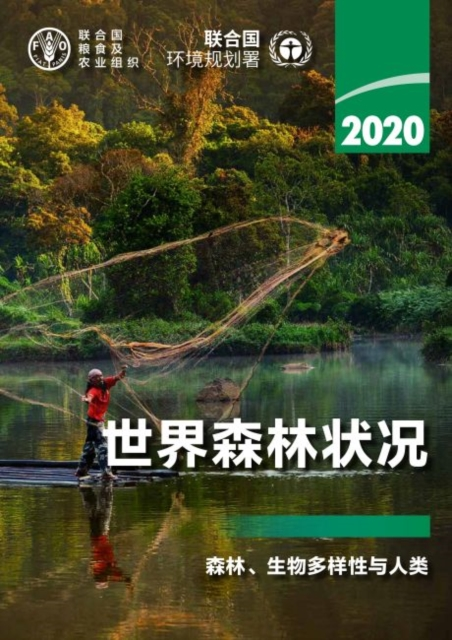 State of the World's Forests 2020 (Chinese Edition)