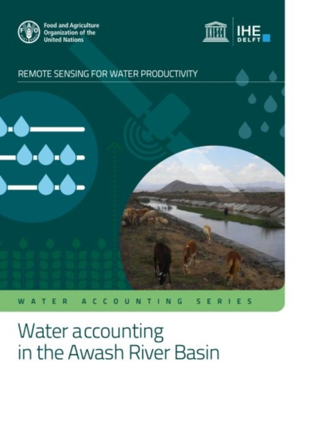 Water accounting in the Awash River Basin