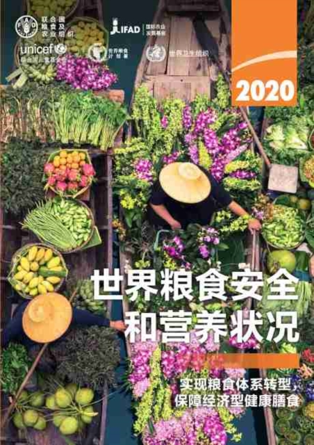 State of Food Security and Nutrition in the World 2020 (Chinese Edition)