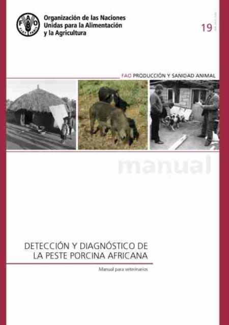 Deteccion y diagnostico de la peste porcina africana